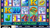 Crazy Cameleons Videogokkast